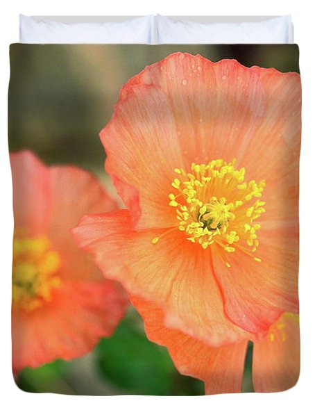 Peach Poppies Duvet Cover by Sally Weigand