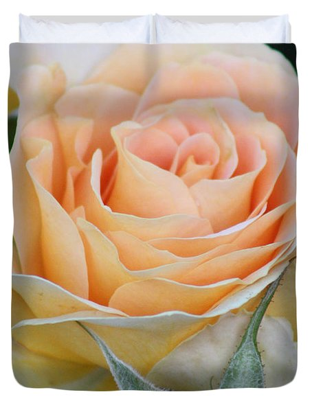 Peach Rose 2 Duvet Cover