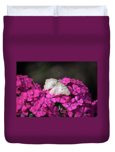 Peacock Butterfly On Fuchsia Phlox Duvet Cover by Suzanne Gaff