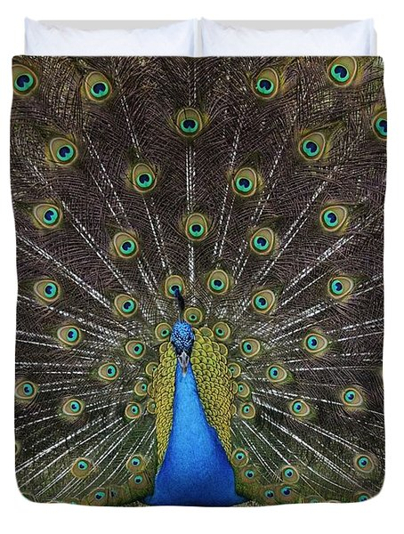 Peacock Displaying Feathers Duvet Cover