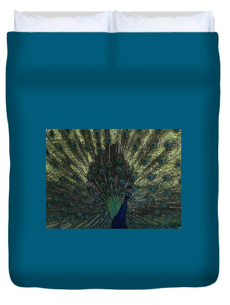 Peacock Eyes Duvet Cover by Michelle Miron-Rebbe