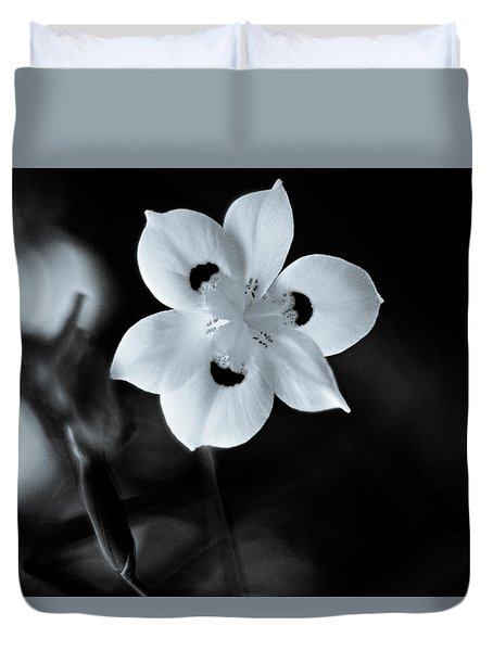 Peacock Flower - Iris - Two Duvet Cover