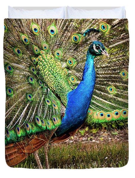 Peacock In Beacon Hill Park Duvet Cover