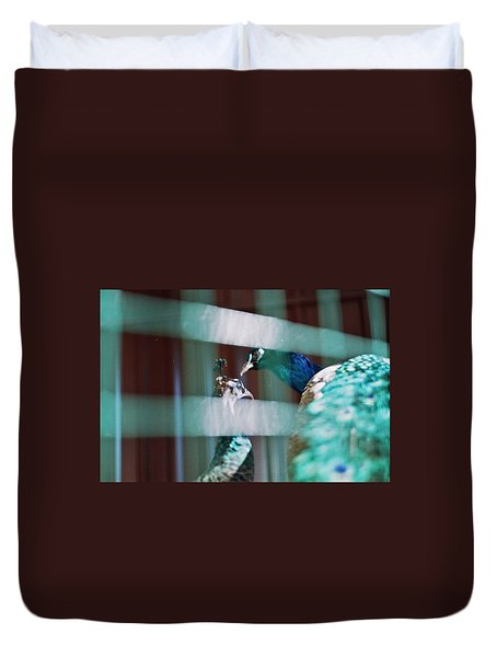 Peacock In The Cage  Duvet Cover