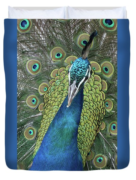 Duvet Cover featuring the photograph Peacock by Matthew Bamberg