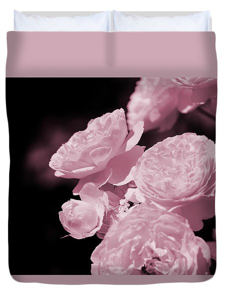 Peacock Pink Cabbage Roses On Black Duvet Cover