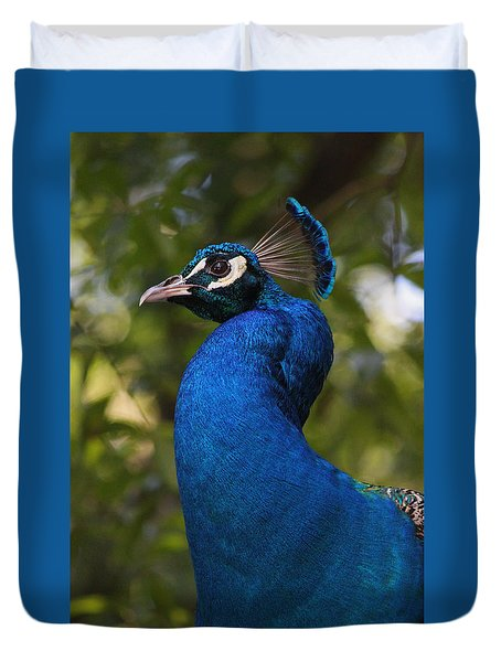 Peacock Series Vi Duvet Cover