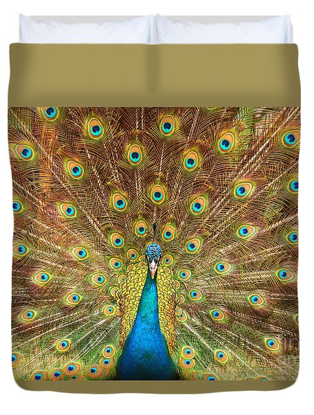 Peacock Showing Its Feathers Xl Duvet Cover