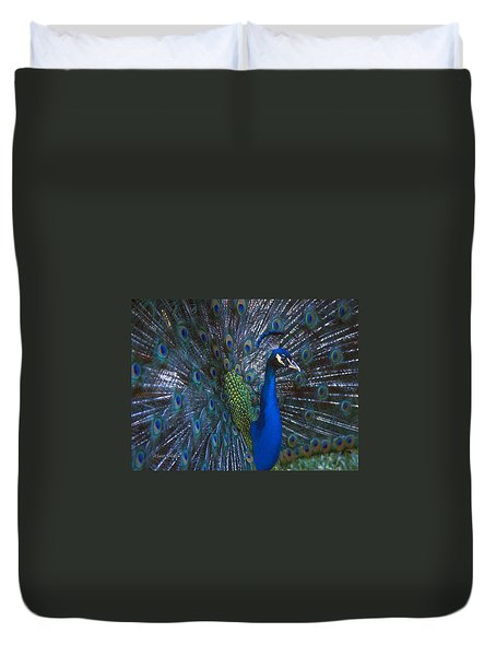 Duvet Cover featuring the photograph Peacock Splendor by Marie Hicks