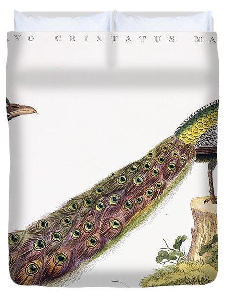 Peafowl Duvet Cover