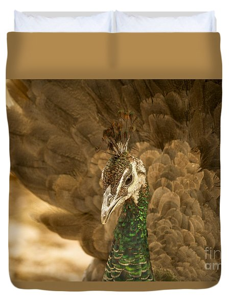 Duvet Cover featuring the photograph Peafowl With A Golden Glow by Ruth Jolly