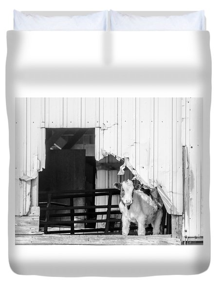 Duvet Cover featuring the photograph Peak-a-boo Calf by Dan Traun