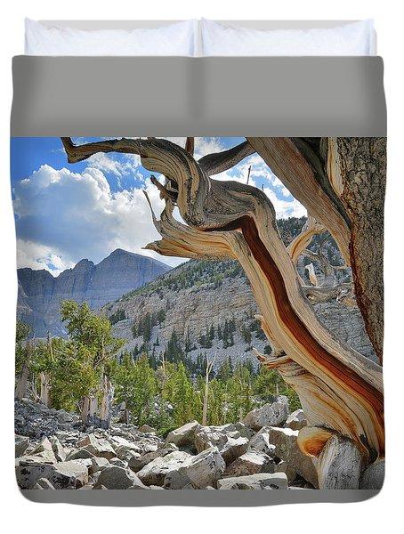 Peak Bristlecone Pine Duvet Cover
