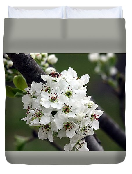 Duvet Cover featuring the photograph Pear Blossoms In Spring by Sheila Brown