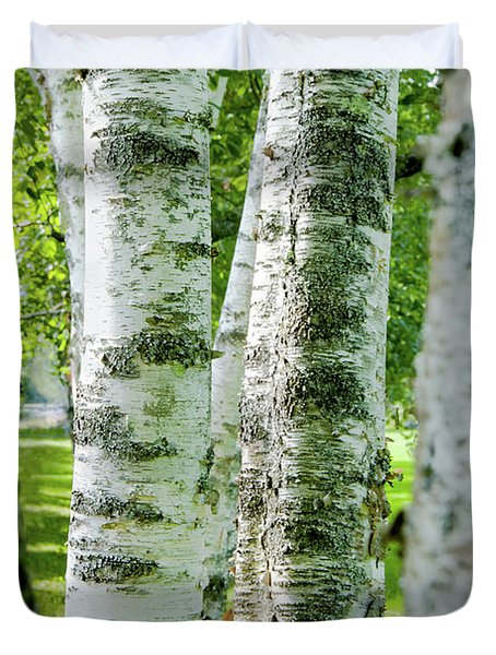 Duvet Cover featuring the photograph Peek A Boo Birch by Greg Fortier
