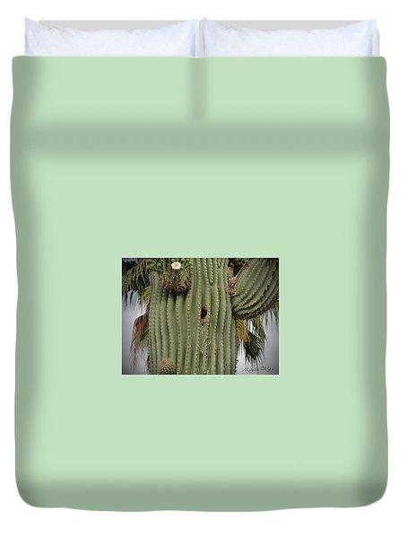 Peek-a-boo Cactus Wren Duvet Cover