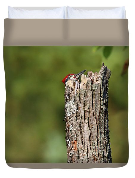 Peek A Boo Pileated Woodpecker Duvet Cover