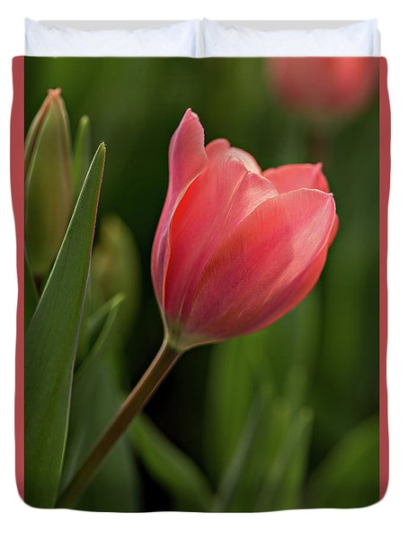 Duvet Cover featuring the photograph Peeking Tulip by Mary Jo Allen