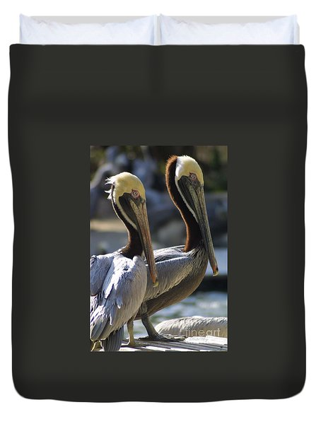 Duvet Cover featuring the photograph Pelican Duo by Dodie Ulery