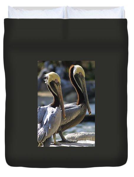 Pelican Duo Duvet Cover by Dodie Ulery