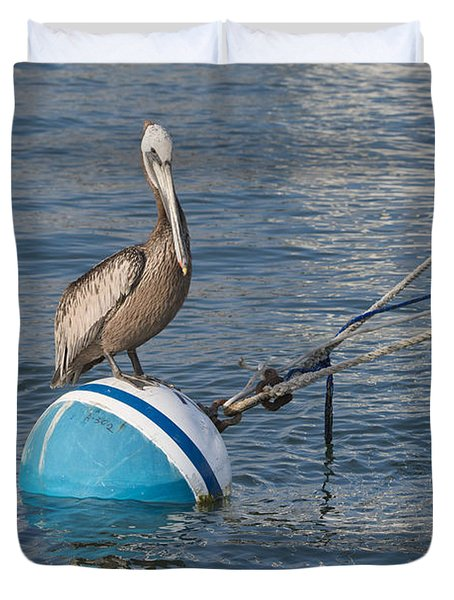 Pelican On A Buoy Duvet Cover