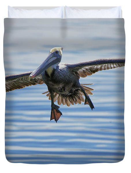 Pelican On Approach Duvet Cover