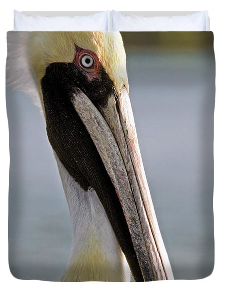 Pelican Portrait Duvet Cover by Sally Weigand