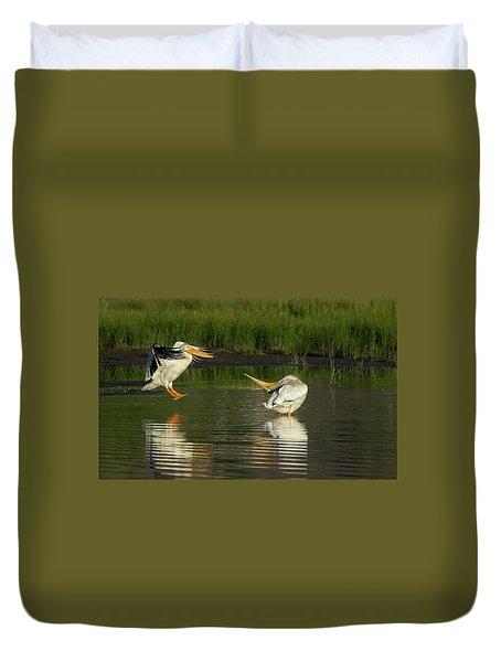 Pelicans 2 Duvet Cover
