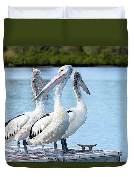 Pelicans 6663. Duvet Cover