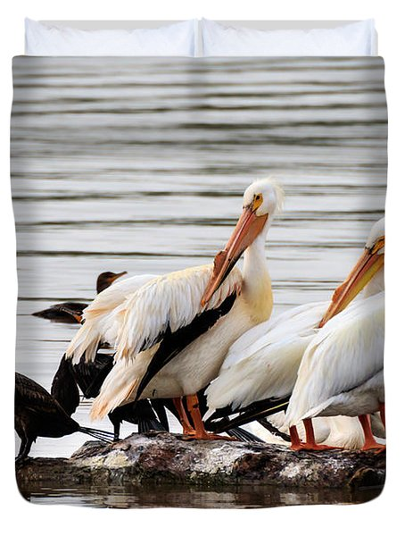 Pelicans And Cormorants Duvet Cover