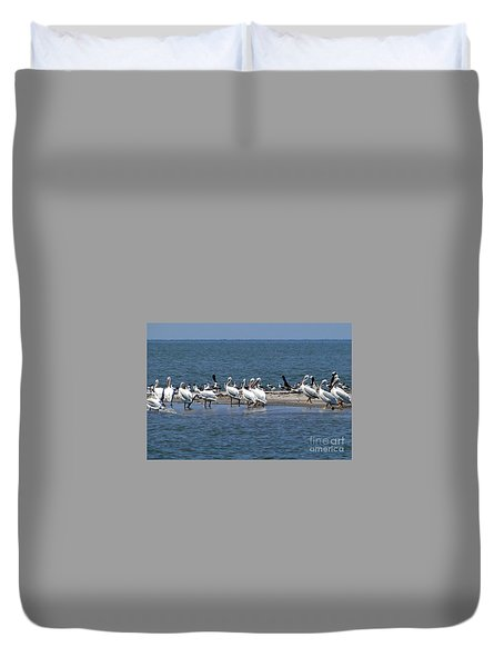 Pelicans Island Duvet Cover by Cindy Croal