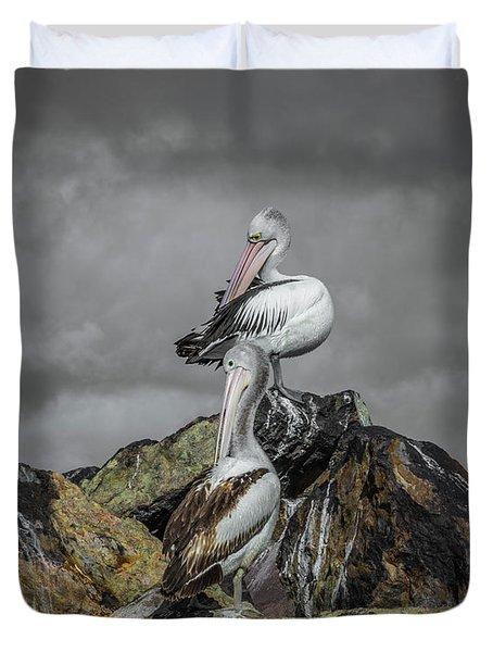 Pelicans On Rocks Duvet Cover