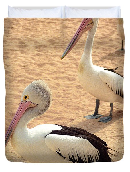 Pelicans Seriously Chillin' Duvet Cover