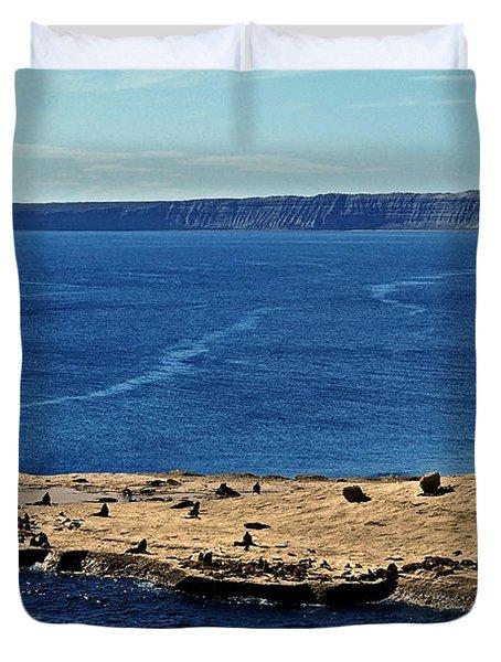 Peninsula De Valdez Duvet Cover by Juergen Weiss