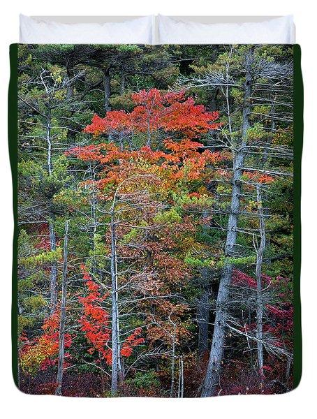 Pennsylvania Laurel Highlands Autumn Duvet Cover by John Stephens