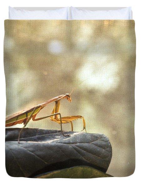 Pensive Mantis Duvet Cover by Douglas Barnett