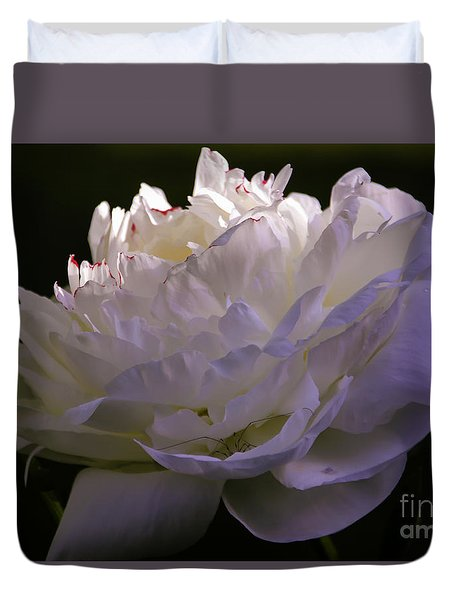 Peony At Eventide Duvet Cover by Marilyn Carlyle Greiner