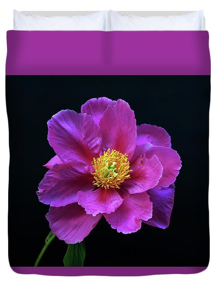 Peony - Beautiful Flowers And Decorative Foliage On The Right Is One Of The First Places Among The G Duvet Cover