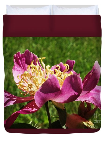 Duvet Cover featuring the photograph Peony  by J L Zarek