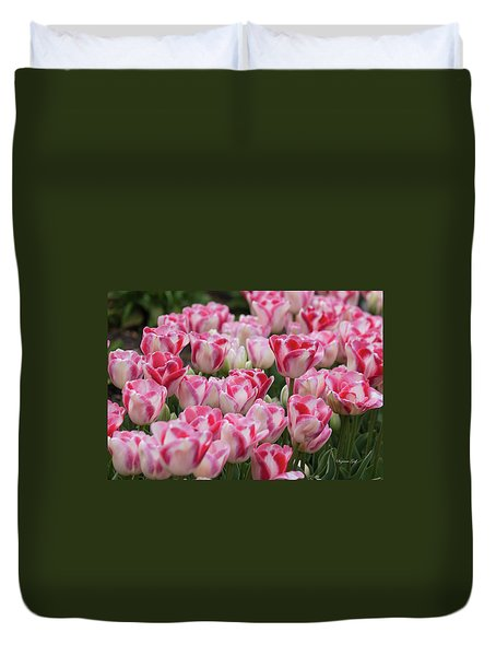 Peppermint Tulip Field IIi Duvet Cover