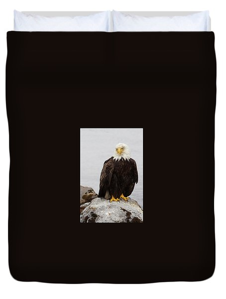 Duvet Cover featuring the photograph Perched Bald Eagle by Brandy Little