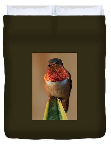 Perched On A Point Duvet Cover