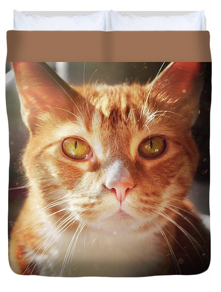 Percy In The Sun Duvet Cover