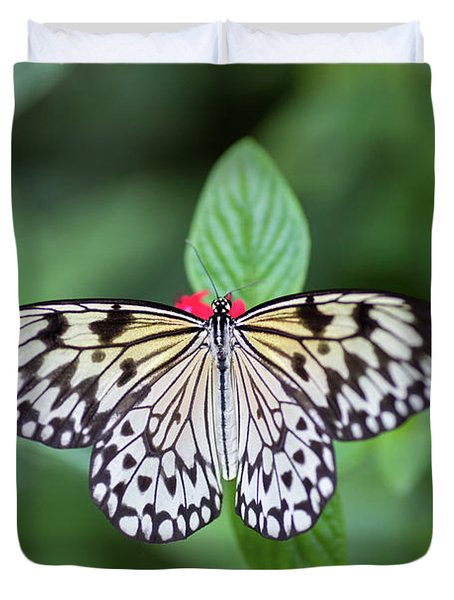 Duvet Cover featuring the photograph Perfect Butterfly Pose by Raphael Lopez