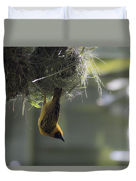 Perfect Weaver Duvet Cover by Ramabhadran Thirupattur