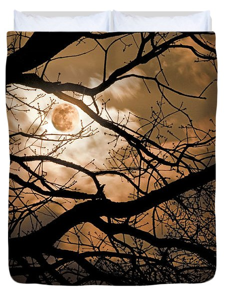 Perigee Moon In The Trees Duvet Cover by Tamyra Ayles