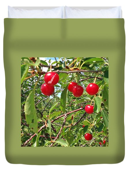 Perry's Cherry Image Duvet Cover by Perry Andropolis