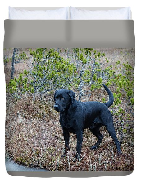 Duvet Cover featuring the photograph Pet Portrait - Radar by Laura  Wong-Rose