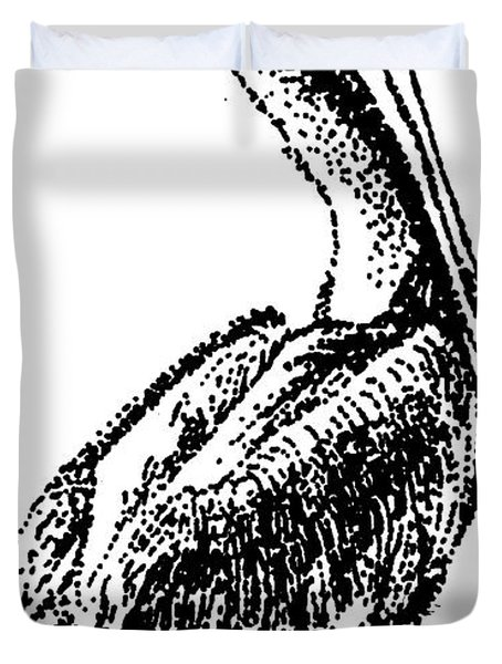 Pete The Pelican Duvet Cover