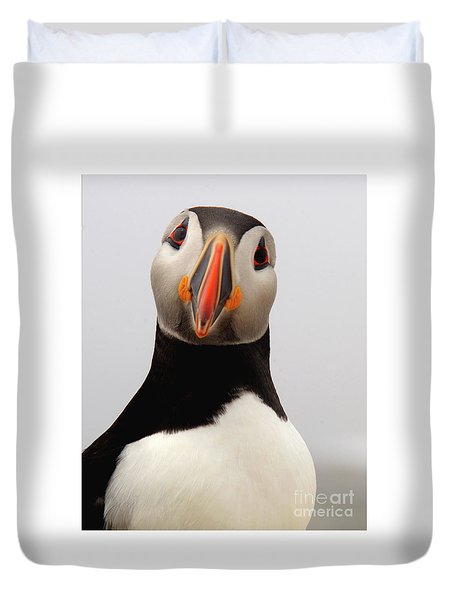 Peter The Puffin Duvet Cover by Jane Axman
